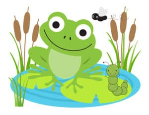 frogs-300x232